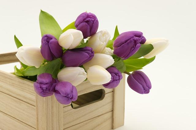 řezané kytky